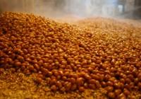 天然醸造の醤油造りの道貫く! 自然の力を生かした和食文化と環境保存を目指して