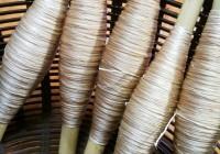 沖縄伝統の織物「芭蕉布」 産地の特性生かした優れた工芸を次世代に残したい